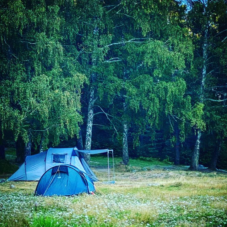 blå tält står på en gräsmatta med skog bakom