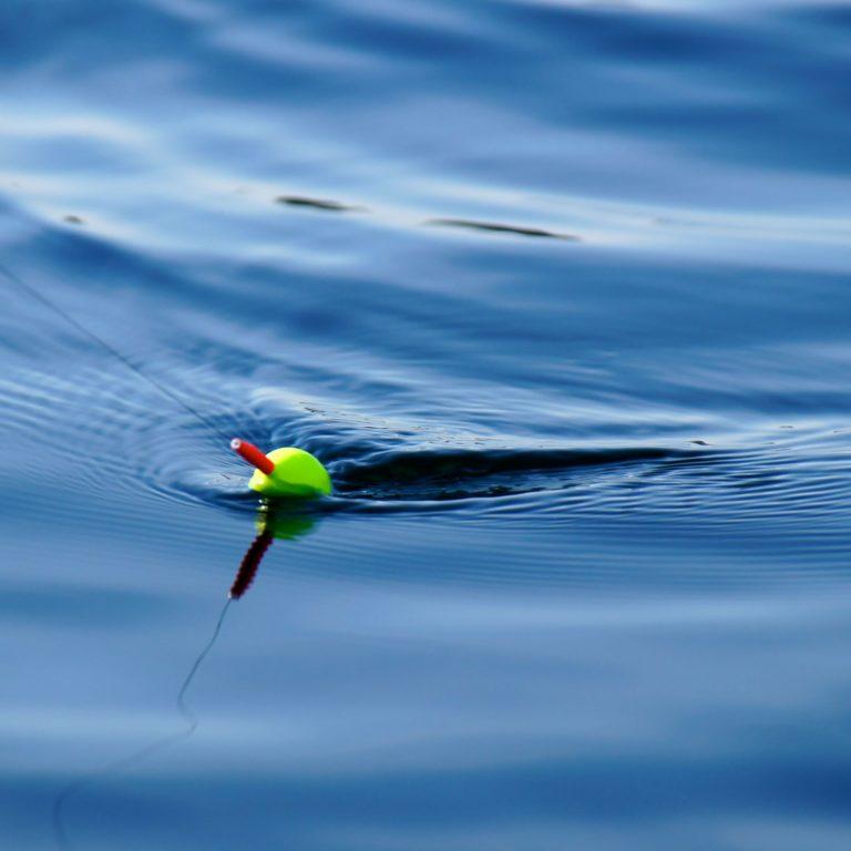 Grönt och rött fiskeflöte i vattnet