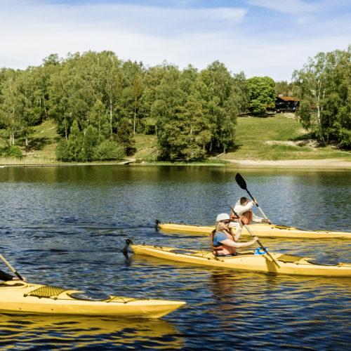 tre personer paddlar kajak på en sjö