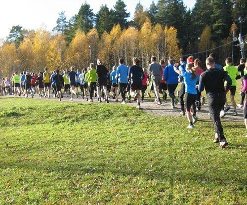 grupp med löpare springer i höstskog